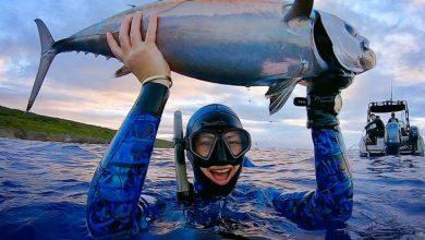 Photo of 10 أخطاء شائعة في ارتياد الصيد تحت الماء.. أخطرها البدلة الضيقة!