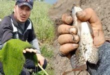 Photo of أبرزها البراشوت.. 3 طرق لصيد الأسماك بالريم في المياه العذبة