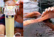 Photo of بالخطوات.. طريقة صنع الكراشة العجيبة لصيد الأخطبوط روطالة والحبار السيبيا